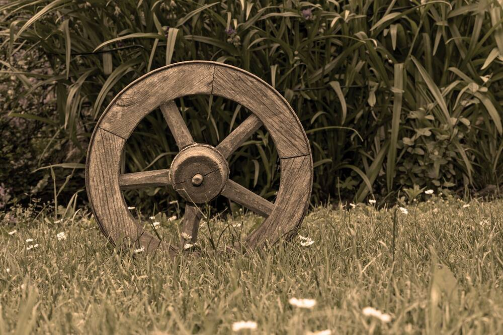 A wooden wheel in grass